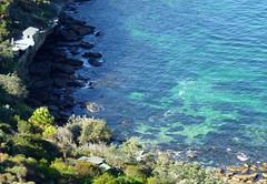 coastline1