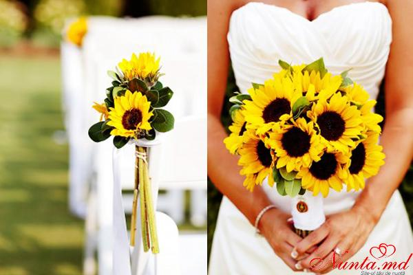 Arta Nunţii > Promoţie!