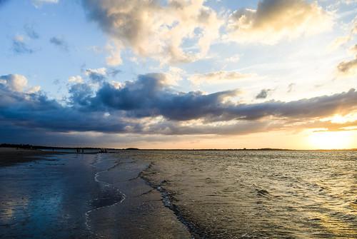 sunset bird marina island boat moss scenic spanish tybee savannah