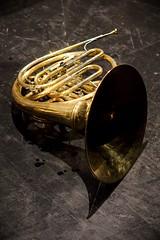 yellow, horn, brass instrument, wind instrument,