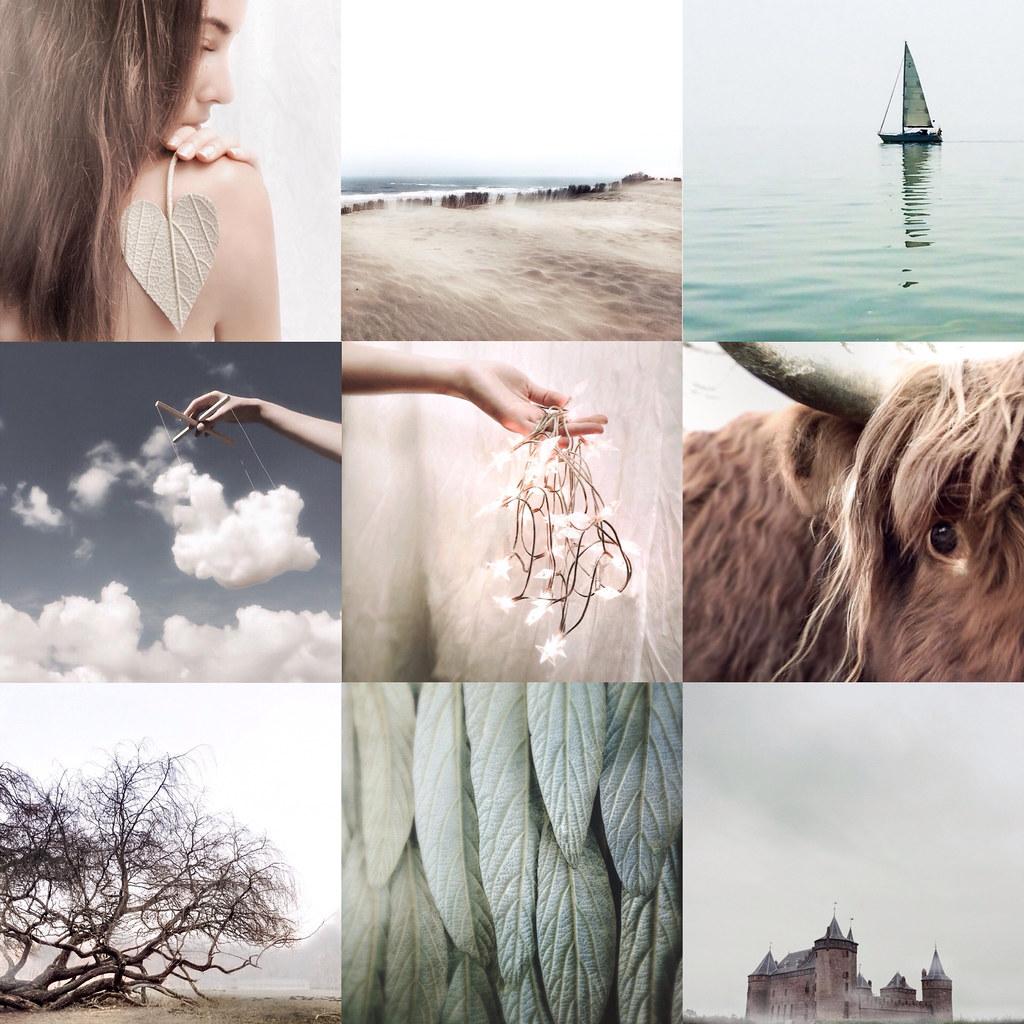 woodssomm instagram user