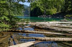 Greendrop Lake, 20 May 2015