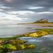 Bamburgh Castle by Caledonia Alan