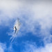 Aerobatic Giant by PauloHenrique Pereira