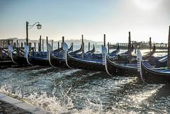 mast(0.0), water(1.0), vehicle(1.0), sea(1.0), watercraft rowing(1.0), boating(1.0), dock(1.0), gondola(1.0), watercraft(1.0), marina(1.0), boat(1.0),