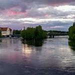 Pielisjoki