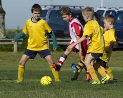 9th Grade Football, 2015