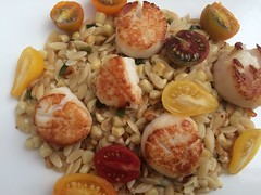 Scallops, corn, orzo