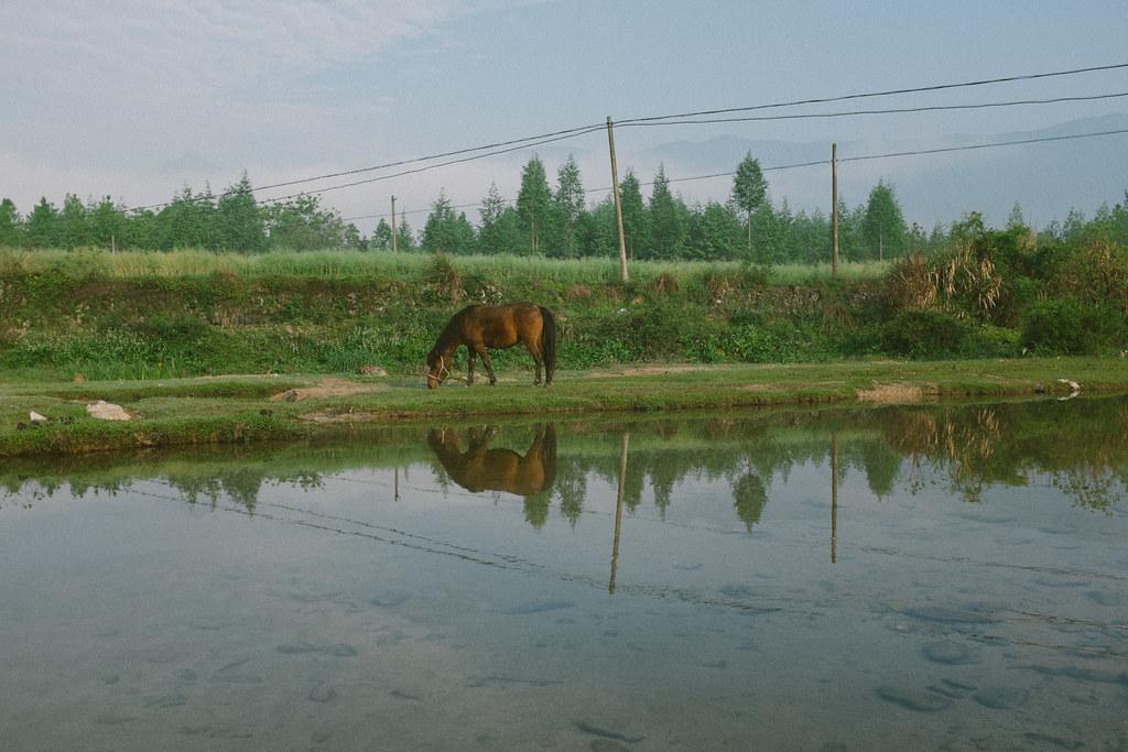 anhui, china-049
