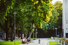 Warm Summer Evening | Kaunas #209/365