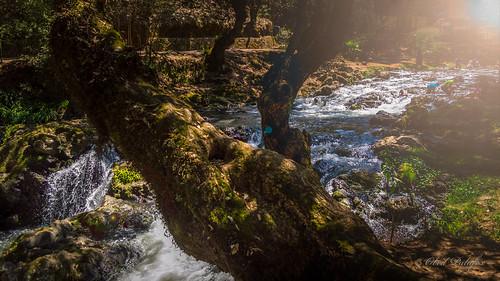 Cascadas de Apatlaco