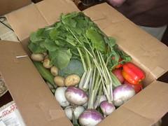 box o' veggies
