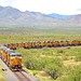 UP dead line of approximately 300 stored locomotives, Pima County, AZ, Aug 1, 2016 by Ivan S. Abrams