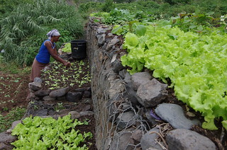 CAPE VERDE - Watershed management project (PABV)
