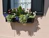 Charleston, SC Flowerbox