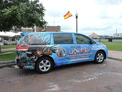 Lionfish Mobile