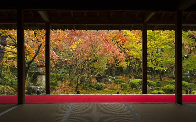Enkou-ji in Autumn 秋の圓光寺