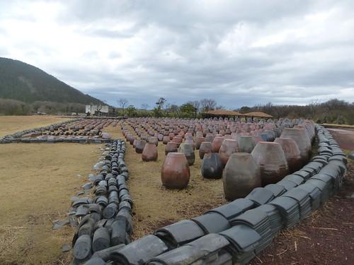 Co-Jejudo-Jeju-tour-Parc des pierres (64)