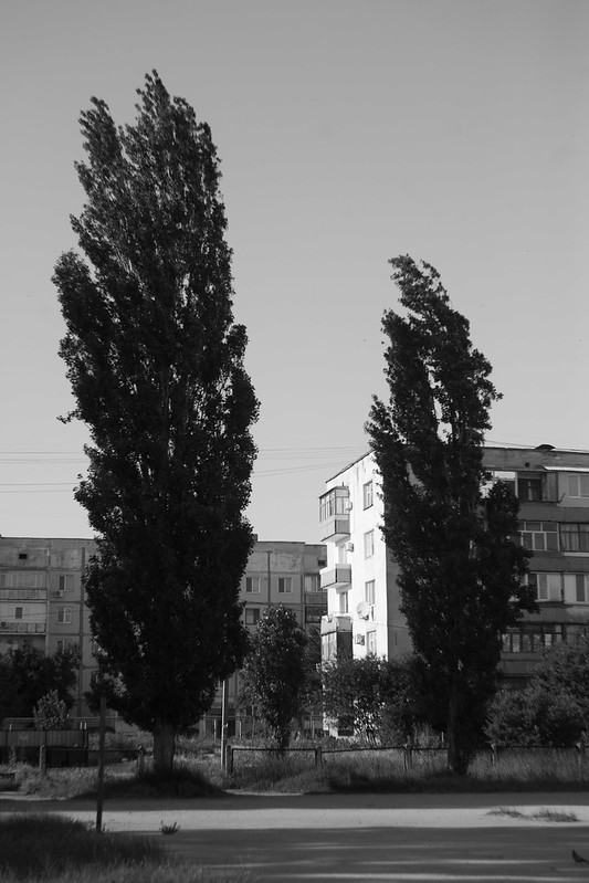 IMG_3899-2