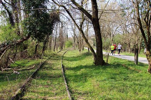Ciclabile Valle dell'Olona