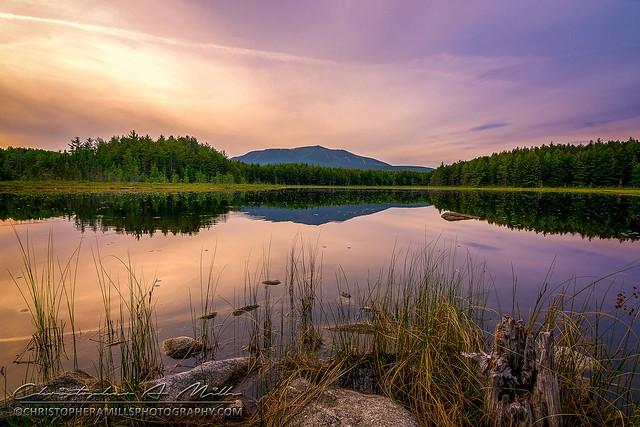 Sunday Pond Reflections