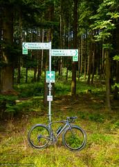 Zwischen Biedenkopf und Engelbach