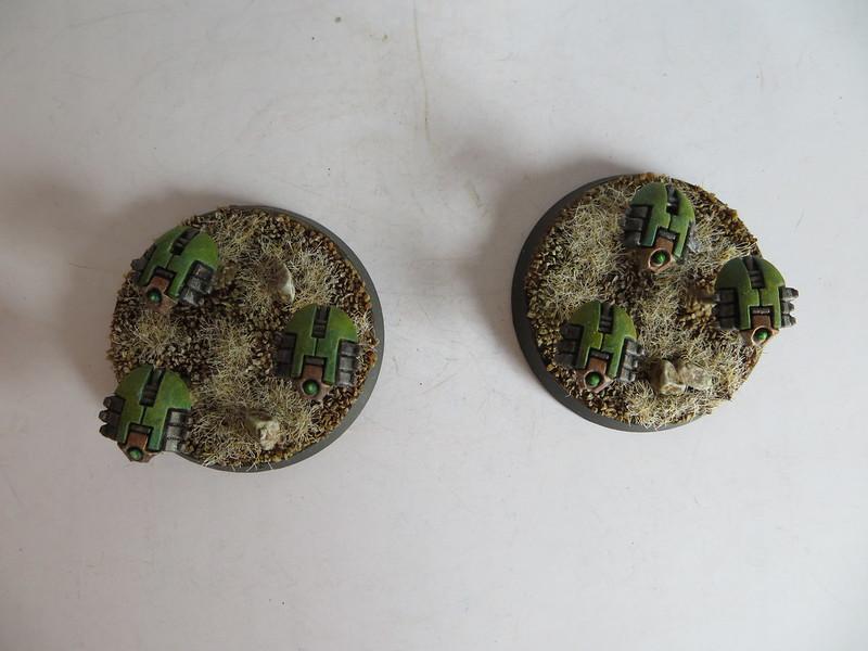 Scarabs I