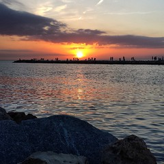 Nice dinner at Crows Nest then #sunset at the Venice Jetty.  #florida
