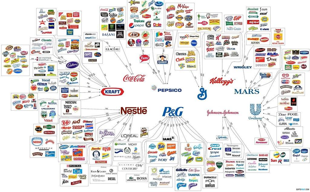 redes_alimentação.jpg