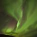 Aurora borealis in Fáskrúðsfjörður by *Jonina*