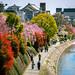Kamo River (鴨川) in Spring in Kyoto (京都) Japan by TOTORORO.RORO