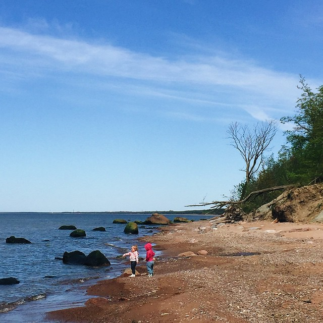Поймать двух детей в объектив – та еще удача. Для Насти это путешествие невероятно счастливое: подруга 24 часа её, в бассейн сегодня ездили и она купалась, ныряла и научилась в круге по-собачьи наяривать. Целый день на природе в саду или вот, на пляж на з