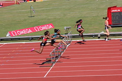 sprint, athletics, track and field athletics, 110 metres hurdles, championship, obstacle race, 100 metres hurdles, sports, running, recreation, outdoor recreation, hurdle, heptathlon, person, hurdling, athlete,