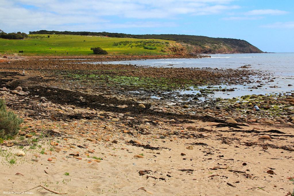 Middle River Kangaroo Island To Stokes