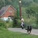 Susie_16-08-09_88 by Joel Bybee