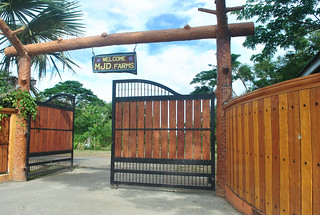 MJD Farm