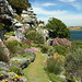 Sea Garden | St Michael's Mount by Mike.Dales