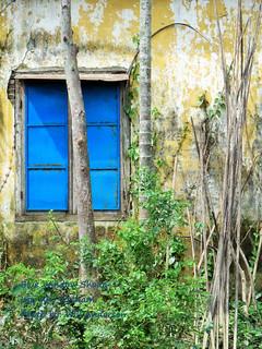 Blue Window Shade - Hoi An - VIETNAM
