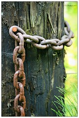 Fence Post with Chain