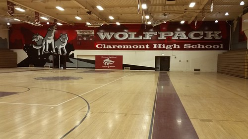 Claremont wall 1 - gym graphics