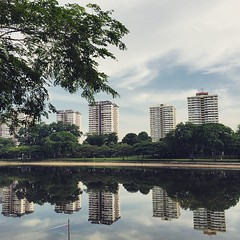Reflective #run this am. #singapore #laborday #love