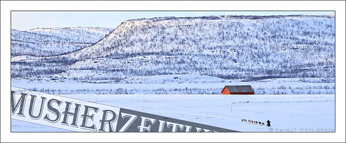 Finnmark / Finnmarkslopet / The Finnmark Race 2015: May-Conny-Johansen-FL1000-2015, Karlebotn, Norway