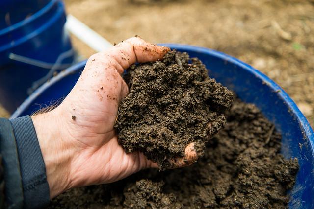 Header of Good Soil