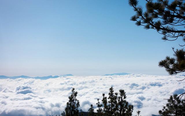 Sea of clouds, m361