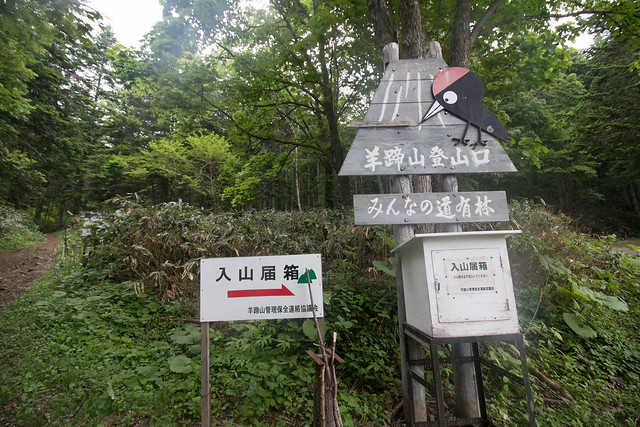 20150615-北海道羊蹄山(3日目)-0192.jpg