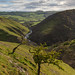 Dovedale by Paul Newcombe