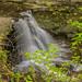 Waterfall on McCormick's Creek