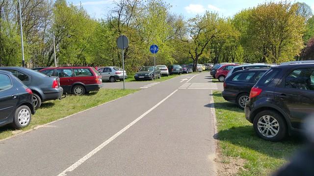 Widok parkujących na trawnikach wokół Ogrodu Botanicznego samochodów .