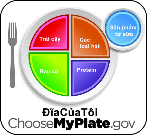 The English version of the MyPlate icon translated into Vietnamese