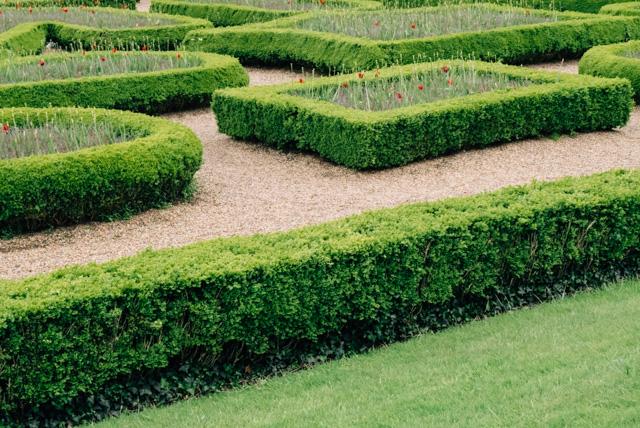 gardens in cardiff